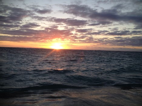 Watching whales greet the day in Laie