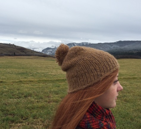 Bonneville Bulky Hat Blue Sky Alpacas TECHNO and Brushed Suri held together